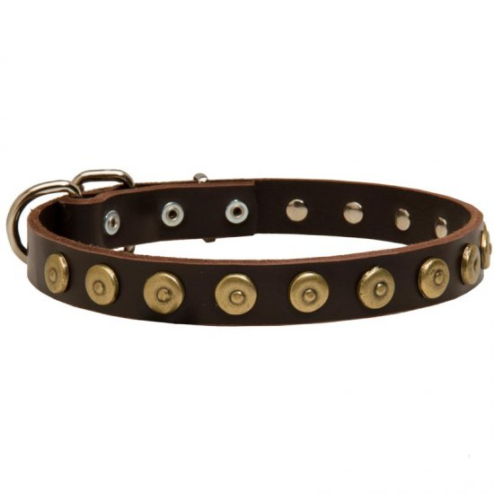 Leather Belgian Malinois Collar with Brass Dotted Circles for Fashion Walking