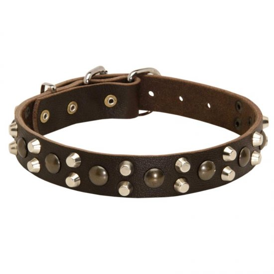 Leather Belgian Malinois Collar With Studs and Pyramids