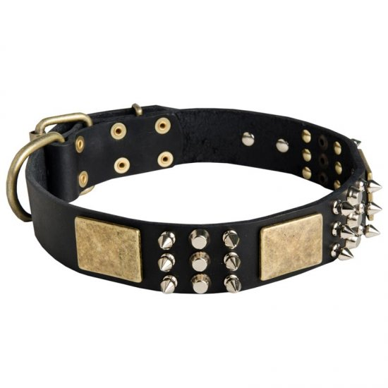 Spiked Leather Belgian Malinois Collar with Plates and Cones