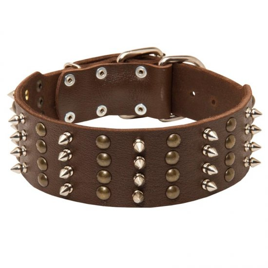 Extra Wide Leather Belgian Malinois Collar Spiked and Studded