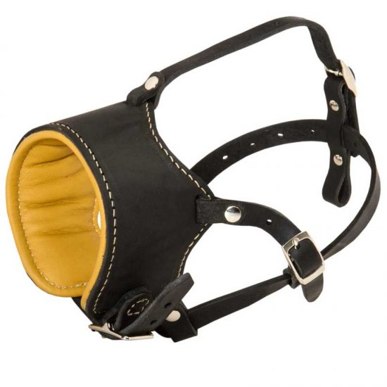 Snout Short Leather Belgian Malinois Muzzle Padded with Nappa Leather