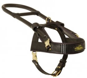 Guide and Assistance Leather Belgian Malinois Harness
