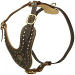 Royal Design Leather Belgian Malinois Harness with Brass Studs