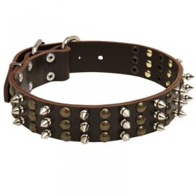 Spiked and Studded Leather Belgian Malinois Collar
