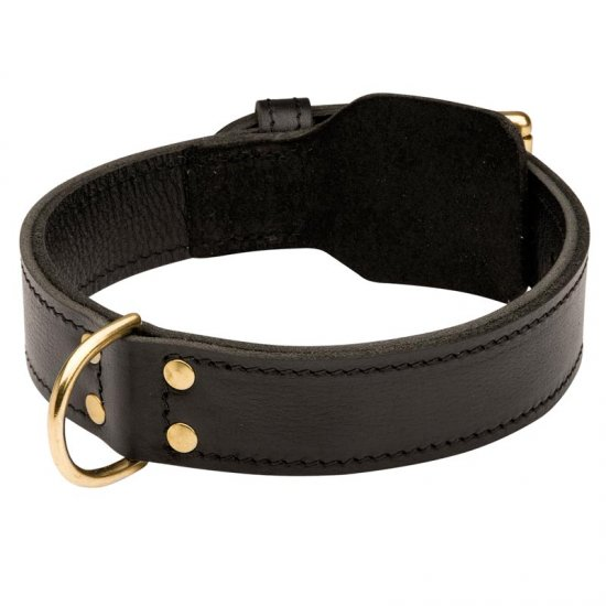 Training 2 Ply Leather Belgian Malinois Collar
