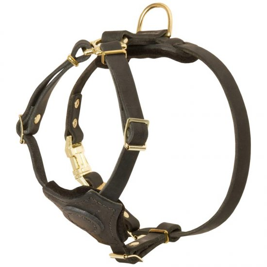 Spruce Leather Belgian Malinois Harness With Small Chest Plate