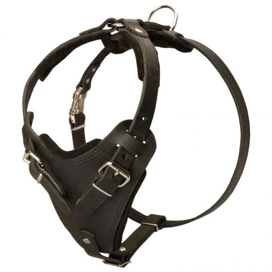 Protection Leather Belgian Malinois Harness for Attack / Agitation Dog Training