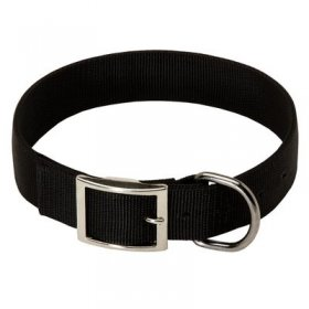 2 Ply Nylon Belgian Malinois Collar