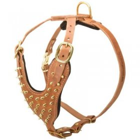 Brass Spiked Leather Belgian Malinois Harness for Fashion Walking