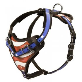 American Flag Painted Leather Belgian Malinois Harness for Agitation Training