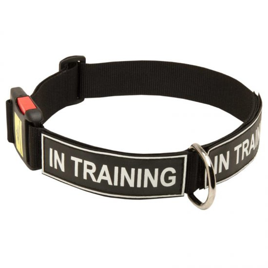All Weather Nylon Belgian Malinois Collar with ID Patches