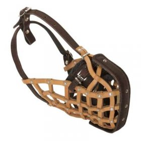 Basket-Like Belgian Malinois Muzzle Leather