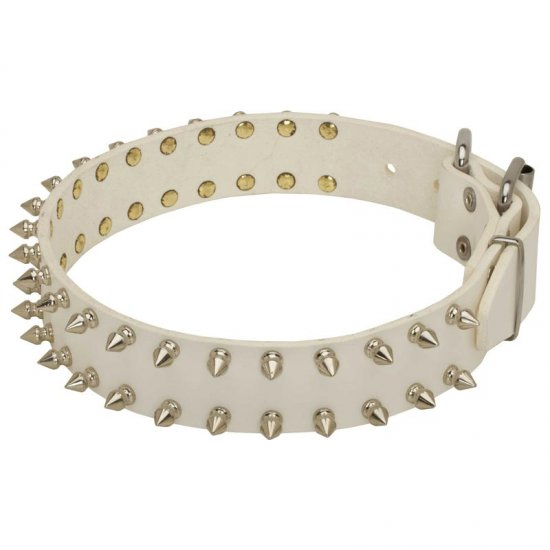 Spiked White Leather Belgian Malinois Collar for Fashion Walking
