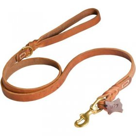 Walking and Training Leather Belgian Malinois Leash with Comfy Handle