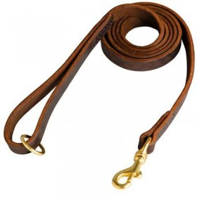 Stitched Leather Belgian Malinois Leash for Training and Walking
