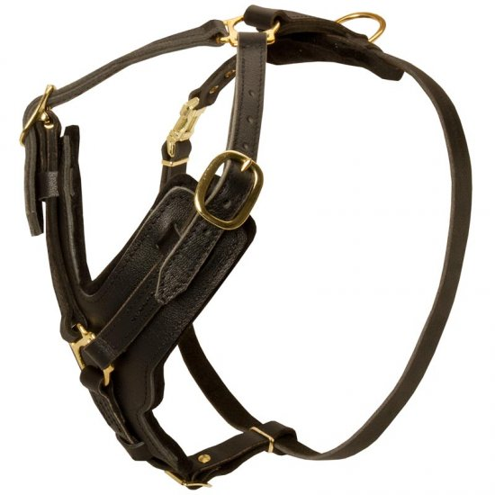 Padded Leather Belgian Malinois Harness for Agitation Training