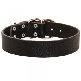 Wide Leather Belgian Malinois Collar for Training and Walking