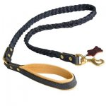 Braided Handcrafted Leather Belgian Malinois Leash with Nappa Leather Lined Handle