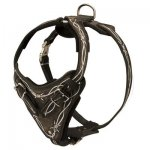 Painted Leather Belgian Malinois Harness for Walking and Training