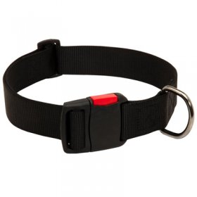 Any-Weather Nylon Belgian Malinois Collar With Quick Release Buckle for Training and Walking