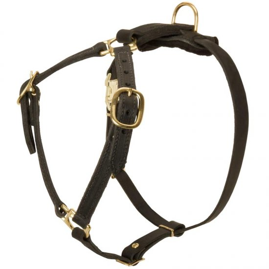 Y-Shaped Leather Belgian Malinois Harness for Tracking and Training