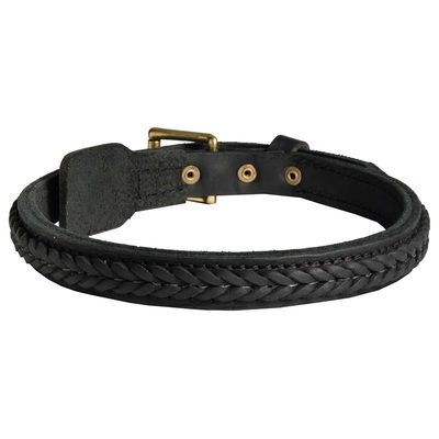 Belgian Malinois Braided Leather Collar 1 Inch