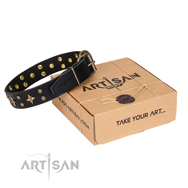 Leather dog collar with studs for everyday walking