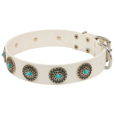 Exclusive White Leather Belgian Malinois Collar with Blue Stones