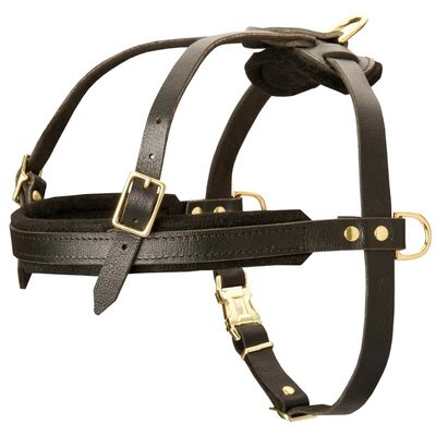 Leather Belgian Malinois Harness for Tracking and Pulling