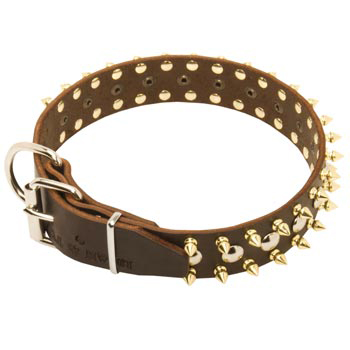 Leather Belgian Malinois Collar with Rust-proof Decoration