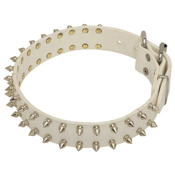 Spiked White Leather Collar for Belgian Malinois Walking
