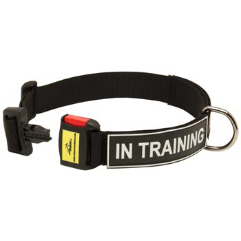 Nylon Dog Collar for Belgian Malinois Police Training