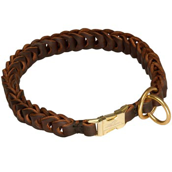 Belgian Malinois Leather Collar Braided Design