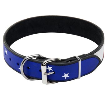Belgian Malinois Leather Collar With American  Flag Painting
