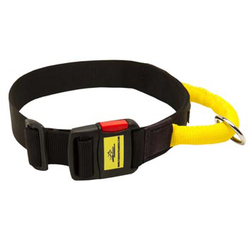 Nylon Belgian Malinois Collar with Quick Release Buckle