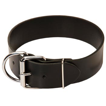 Belgian Malinois Leather Collar of Extra Width