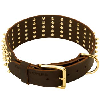 Leather Belgian Malinois Collar with Solid Buckle and D-ring