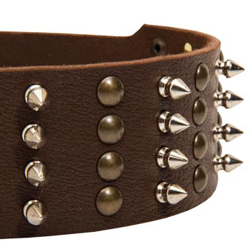 Belgian Malinois Leather Collar with Rust-proof Fittings
