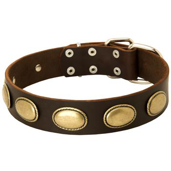 Fashion Leather Collar with Vintage Plates