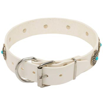 Leather   Belgian Malinois Collar White Fancy for Dog Training, Walking