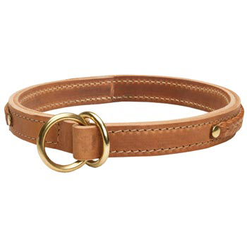 2 Ply Leather Choke Collar for Belgian Malinois