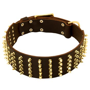 Fashionable Spiked Leather Belgian Malinois Collar
