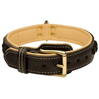 Belgian Malinois Decorated  Leather Dog Collar