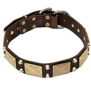 Nickel Studded Leather Belgian Malinois Collar
