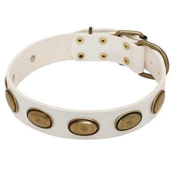 White Leather Belgian Malinois Collar with Vintage Oval Plates