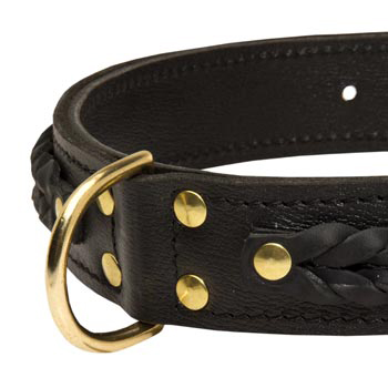Belgian Malinois Wide Leather Collar with D-ring