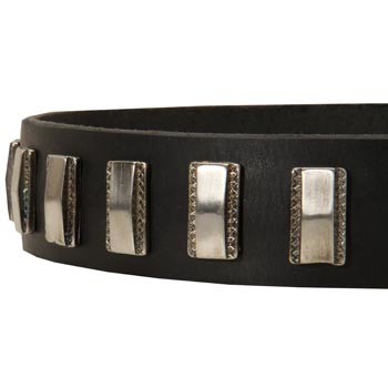 Stylish Leather Collar with Vintage Plates for Belgian Malinois