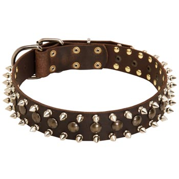 Belgian Malinois Leather Collar with Stylish Decoration