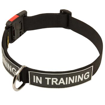 Nylon Belgian Malinois Collar With ID Patches