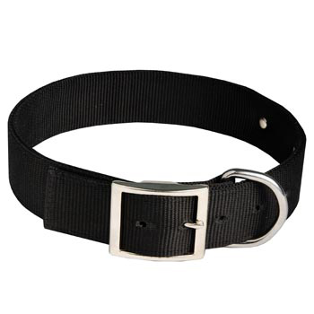 Belgian Malinois Training Collar with ID Tag